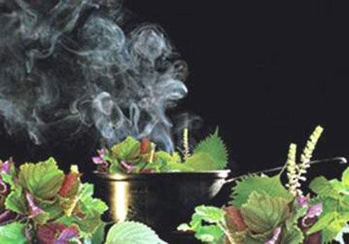Cách nấu nồi lá xông điều trị cảm cúm