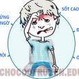 Món ăn bài thuốc trị cảm cúm