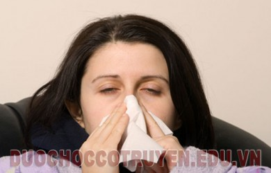 Dược học cổ truyền bài thuốc dân gian trị viêm mũi mãn tính