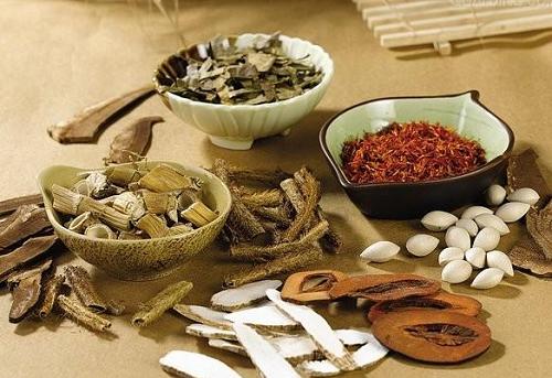 Bài thuốc đông y chữa trị bệnh gout hiệu quả - 2