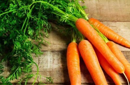 Bật mí công dụng chữa bệnh từ cây Cà rốt