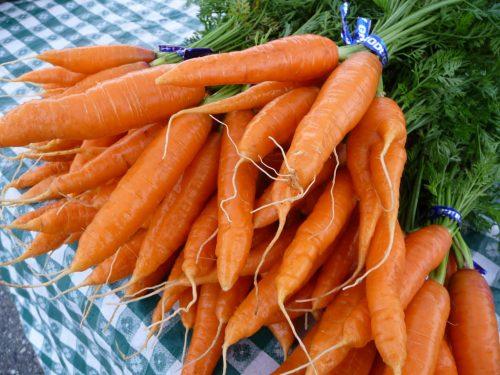 Cà rốt là một loại rau củ được trồng khá nhiều ở nước ta