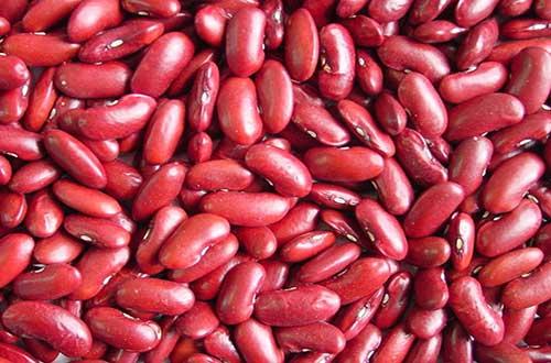 Ăn hạt đậu đỏ tốt cho thận