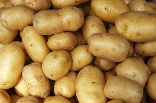 Giúp bổ sung chất sắt cho cơ thể nhờ khoai tây