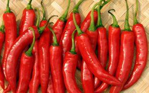 Bài thuốc chữa bệnh từ ớt trong YHCT
