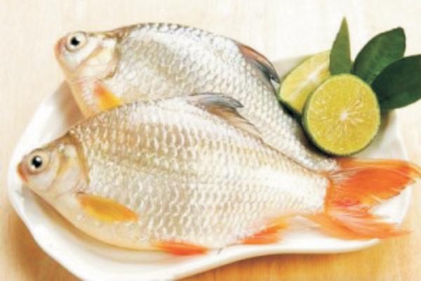 Món ăn bài thuốc dành cho người huyết áp thấp