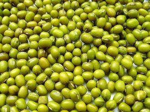 YHCT hướng dẫn 3 món ăn bài thuốc chữa yếu sinh bằng giá đỗ xanh