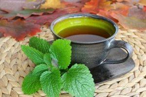 Giá trị dinh dưỡng của trà kinh giới