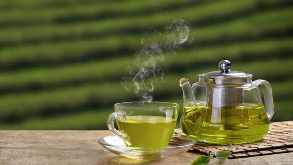Trà xanh có rất nhiều công dụng đối với sức khỏe